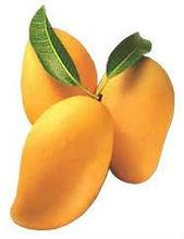 Fresh indian mango