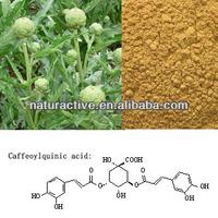 P.E. of Artichoke 1% to 10% Chlorogenic acid
