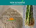 Iba 98% TC regulador del crecimiento de plantas 3 indol butírico ácido