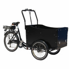 CE approved Electric Cargo Bike/Trike