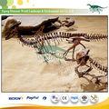 dinosauro fossile artificiale per bothriospondylus fossili dino