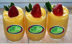 GSF Flora Rapid Yogurt Starter Culture