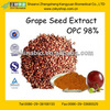 GMP Manufacturer Supply Grape Seed Extract with 98% Proanthocyanidins