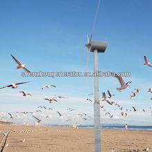 GLB30KW wind generator productive enterprise