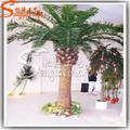 gigante de fecha artificial de árboles de palma para la decoración