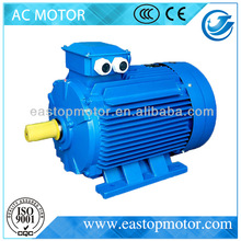 Y3 Series Three Phase ac electromotor for car