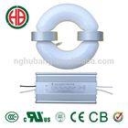 HB 40w 50w 60w 80w 100w R induction lamp 12v 24v solar lamp
