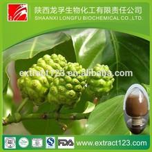 Factory supply fresh noni fruit