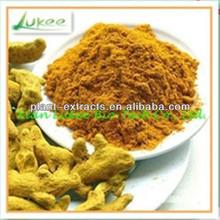 turmeric Natural extract 95%/turmeric root powder/organic turmeric extract