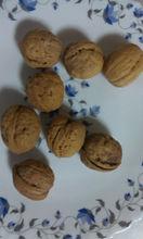 Walnut in Shell Size 30 mm