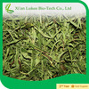 Herbs Extract , Curcumin , Stevia extracts/china wholesale/organic products