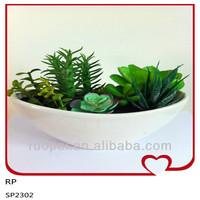 Beautiful Wholesale Artificial Succulents Plants