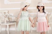 flower girl dress new arrival /New summer cute girls dress short princess costumes