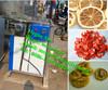 solar energy small fruit drying machine/small solar fruits dryer