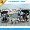 Electric Rickshaw Pedicab for Sale