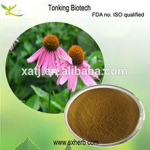 2012 Hot Echinacea Extract (polyphenol 4.0%. UV)