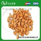 Manufacture Supply Almond Powder