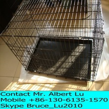 Animal kennel wires mesh cage