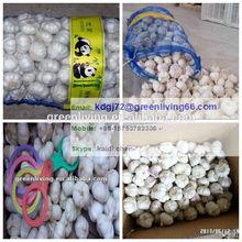 New fresh red garlic 4.5cm 5.0cm 5.5cm 6.0cm packed by carton or mesh bag/ Alho bawang putih