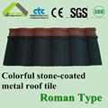 الصلب سقف القرميد الروماني سقوف نوع مواد البناء