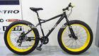 CW-S001 alloy frame snow bike