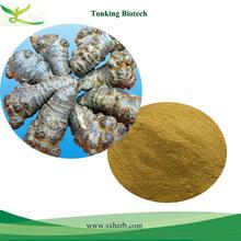 ISO Certificated Notoginseng/Panax Notoginseng Extract,radix notoginseng powder