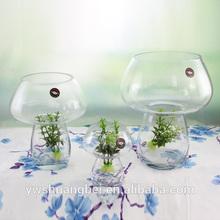 hot sale beautiful unique mushroom shaped glass vase, glass tank, aquarium