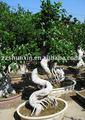 حديقة النباتات الزينة اللبخ