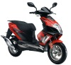 Exclusive EEC / EPA 50cc 125cc 150cc gas scooter