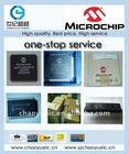 MCU IC MICROCHIP PIC
