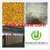 High quality tartary buckwheat powder