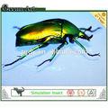 2014 nuevos productos insectos palyground