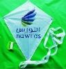 kites flying toys