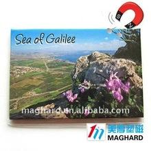 wholesale Sea of galilee tourist souvenirs Iron Magnet Fridge Magnets