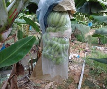 UV stabilizer protective bag for Banana PPSB non woven fruit protection bag
