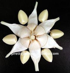 2014 Cold-storaged Normal White Garlic