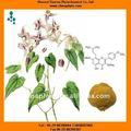 Epimedium extracto de fabricación de la alta pureza Extract icariina 98%