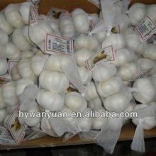 cinese aglio fresco