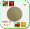 Soybean Amino Acid Powder 80%