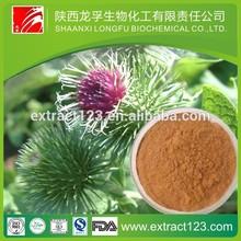 great burdock root extract