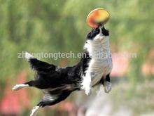 2015 più recente promozionale cane di plastica frisbee