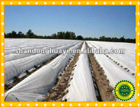 Non Woven Fabric For Agriculture manufacturer