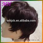 Hot Sales Beautiful Short 100% Human Hair Wig
