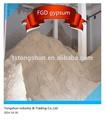 Diretamente de fornecimento de gesso fgd, flue gás dessulfuração gesso para fábrica de cimento