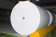 Copy Paper Roll