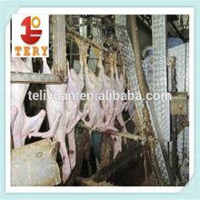 De aves de corral equipos de pollo matadero
