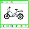 electric bike manufacturer