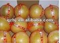 2014 fournisseur de fruits frais pomelo