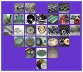 De corte de pedra de moagem de polimento ferramentas de perfuração todos os tipos de ferramentas de diamante
