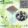 100% natural Natural Garlic Extract